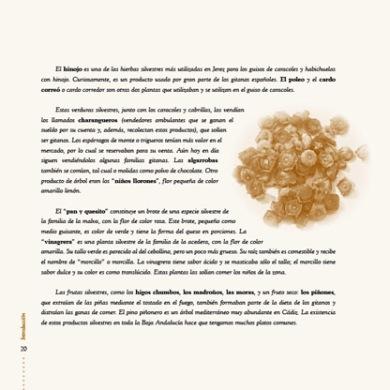 cocina gitana_012