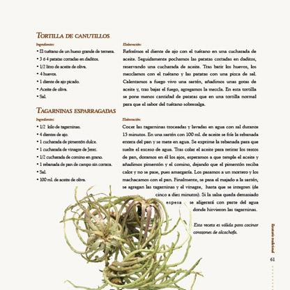 cocina gitana_041