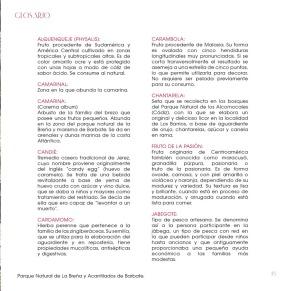 cocteles_66