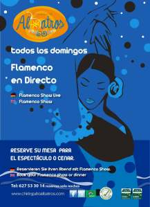 cartel-Domingos-Flamencos-01