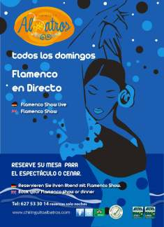 cartel-Domingos-Flamencos-01