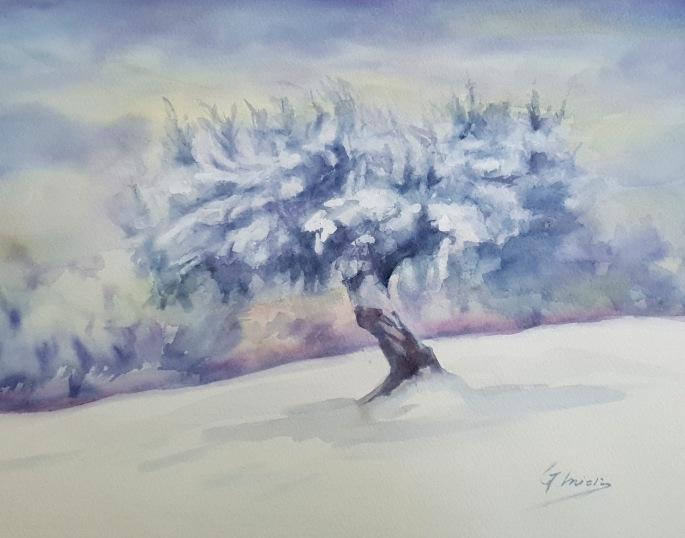 Olivo en la nieve. Acuarela 30x40